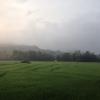 ทางรอดเกษตรกรไทย